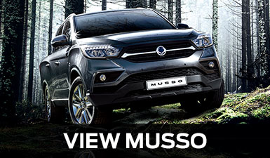 View SsangYong Musso